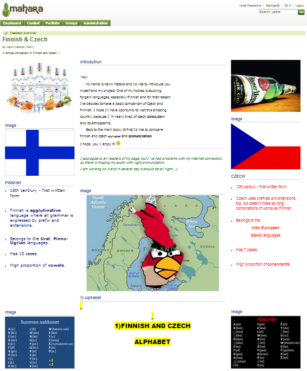 International project in Mahara.png